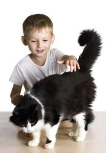 Binatang Peliharaan Membantu Memacu Kecerdasan Anak di kategori Parenting
