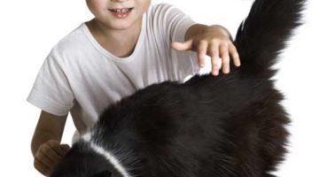 Binatang Peliharaan Membantu Memacu Kecerdasan Anak